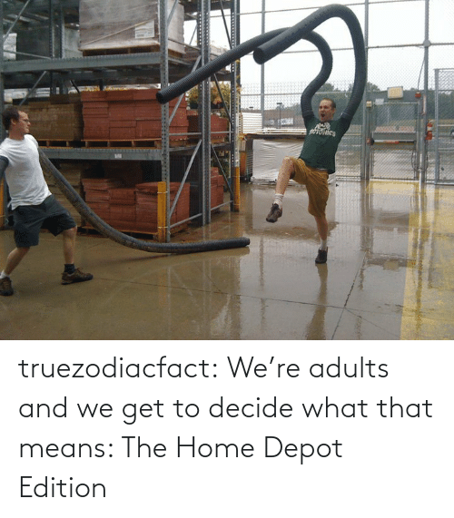 Tumblr, Blog, and Home: truezodiacfact:  We're adults and we get to decide what that means: The Home Depot Edition