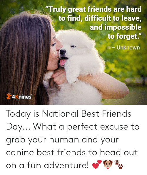 "best friends day: ""Truly great friends are hard  to find, difficult to leave,  and impossible  to forget.""  Unknown  4Knines Today is National Best Friends Day... What a perfect excuse to grab your human and your canine best friends to head out on a fun adventure! 💕🐶🐾"