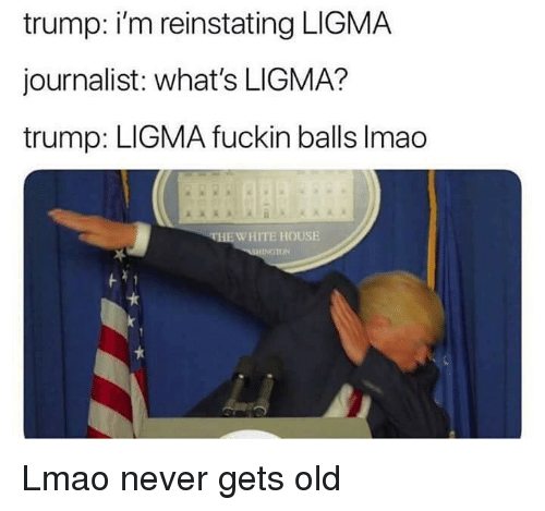 Lmao, House, and Trump: trump: i'm reinstating LIGMA  journalist: what's LIGMA?  trump: LIGMA fuckin balls Imao  EWHITE HOUSE  ON Lmao never gets old