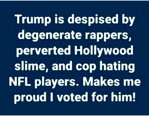 i voted: Trump is despised by  degenerate rappers,  perverted Hollywood  slime, and cop hating  NFL players. Makes me  proud I voted for him!