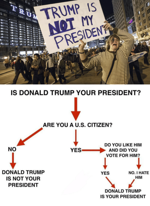 Presiden: TRUMP IS  NOT MY  PRESIDEN  IS DONALD TRUMP YOUR PRESIDENT?  ARE YOU A U.S. CITIZEN?  NO  DO YOU LIKE HIM  YES . AND DID YOU  VOTE FOR HIM?  DONALD TRUMP  IS NOT YOUR  PRESIDENT  YES  NO. I HATE  HIM  DONALD TRUMP  IS YOUR PRESIDENT