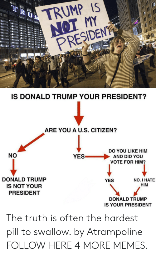 Presiden: TRUMP IS  NOT MY  PRESIDEN  IS DONALD TRUMP YOUR PRESIDENT?  ARE YOU A U.S. CITIZEN?  NO  DO YOU LIKE HIM  YES . AND DID YOU  VOTE FOR HIM?  DONALD TRUMP  IS NOT YOUR  PRESIDENT  YES  NO. I HATE  HIM  DONALD TRUMP  IS YOUR PRESIDENT The truth is often the hardest pill to swallow. by Atrampoline FOLLOW HERE 4 MORE MEMES.