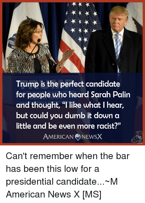 "American News: Trump is the perfect candidate  for people who heard Sarah Palin  and thought, ""l like what I hear,  but could you dumb it down a  little and be even more racist?""  AMERICAN NEWSX Can't remember when the bar has been this low for a presidential candidate...~M American News X [MS]"