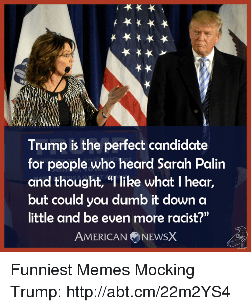 """Sarah Palin: Trump is the perfect candidate  for people who heard Sarah Palin  and thought, """"l like what I hear,  but could you dumb it down a  little and be even more racist?""""  AMERICAN NEWSX Funniest Memes Mocking Trump: http://abt.cm/22m2YS4"""