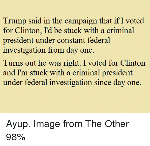 Ify: Trump said in the campaign that ifI voted  for Clinton, I'd be stuck with a criminal  president under constant federal  investigation from day one.  Turns out he was right. I voted for Clinton  and I'm stuck with a criminal president  under federal investigation since day one. Ayup. Image from The Other 98%