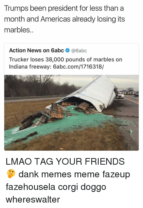 trucker: Trumps been president for less than a  month and Americas already losing its  marbles.  Action News on 6abc  6abc  Trucker loses 38,000 pounds of marbles on  Indiana freeway: 6abc.com/1716318/ LMAO TAG YOUR FRIENDS 🤔 dank memes meme fazeup fazehousela corgi doggo whereswalter