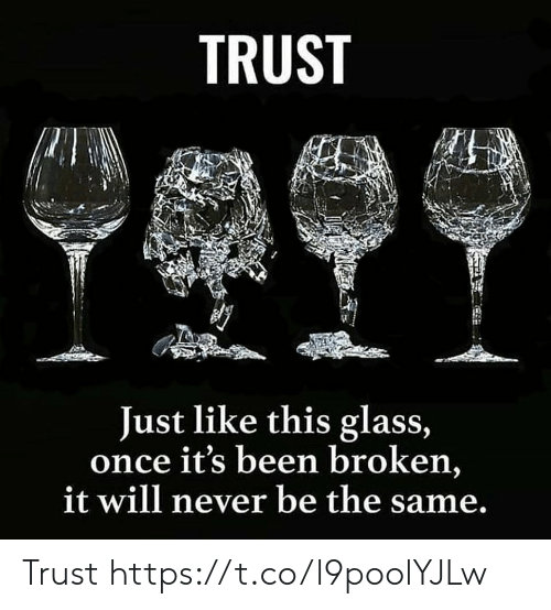 Memes, Never, and Been: TRUST  Just like this glass,  once it's been broken,  it will never be the same. Trust https://t.co/l9poolYJLw