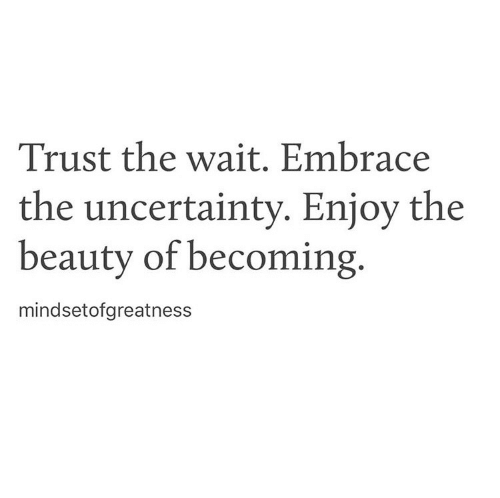 Embrace The: Trust the wait. Embrace  the uncertainty. Eniov the  beauty of becoming.  mindsetofgreatness