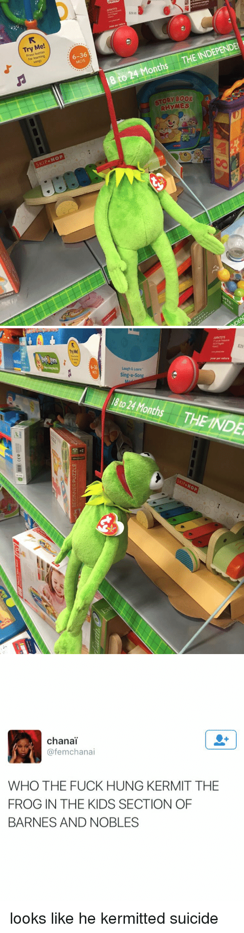 barnes and noble: Try Me  Press button  6-36  for HOP  SKIP  $2995  INDEPENDEN i  to Months THE 18 24 STORY BOOK  RHYMES   Laugh & Learn  Sing-a-Son  18 24 Mo  to Hop  JURATOrs  hover par nature  $29   chana  (a femchanai  WHO THE FUCK HUNG KERMIT THE  FROG IN THE KIDS SECTION OF  BARNES AND NOBLES looks like he kermitted suicide
