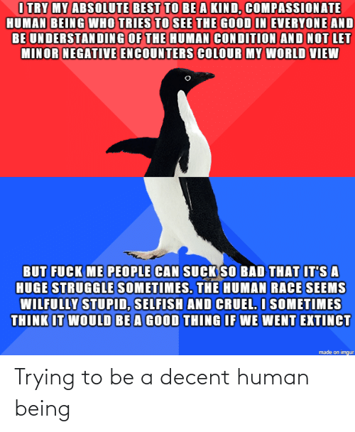 human: Trying to be a decent human being