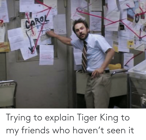 Friends Who: Trying to explain Tiger King to my friends who haven't seen it