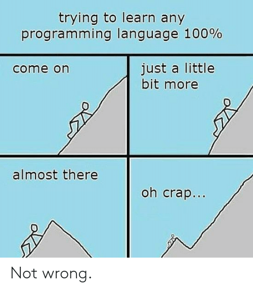 a little bit: trying to learn any  programming language 100%  just a little  bit more  come on  almost there  oh crap... Not wrong.