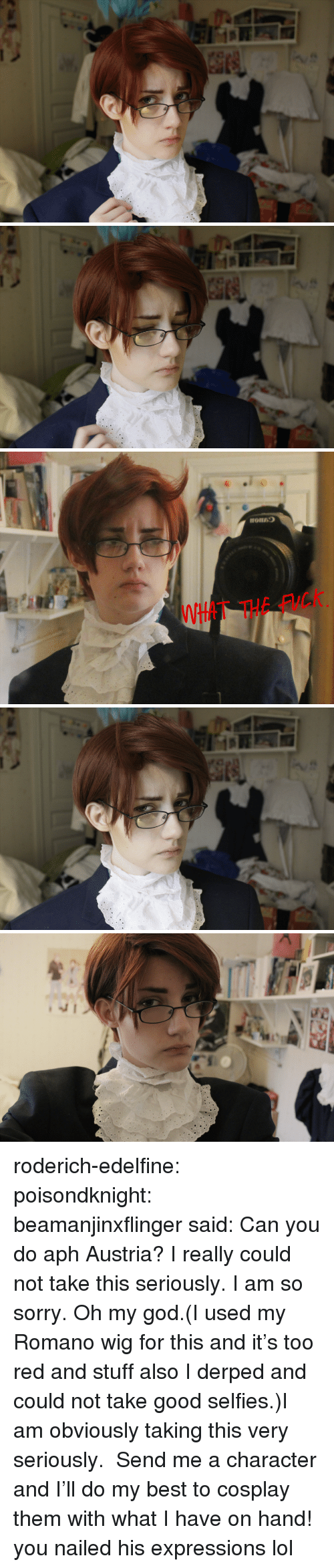 I Am So Sorry: tT THE FuCK roderich-edelfine:  poisondknight:   beamanjinxflingersaid:Can you do aph Austria?  I really could not take this seriously. I am so sorry. Oh my god.(I used my Romano wig for this and it's too red and stuff also I derped and could not take good selfies.)I am obviously taking this very seriously. Send me a character and I'll do my best to cosplay them with what I have on hand!  you nailed his expressions lol