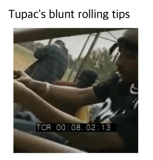 tcr: Tupac's blunt rolling tips  TCR 00:08. 02 13