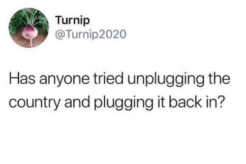 Back, Turnip, and Country: Turnip  @Turnip2020  Has anyone tried unplugging the  country and plugging it back in?
