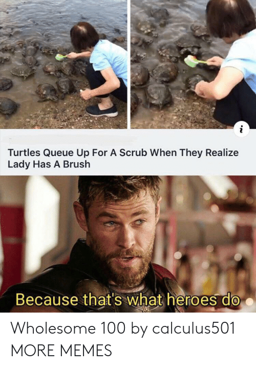 turtles: Turtles Queue Up For A Scrub When They Realize  Lady Has A Brush  Because that's what heroes do Wholesome 100 by calculus501 MORE MEMES