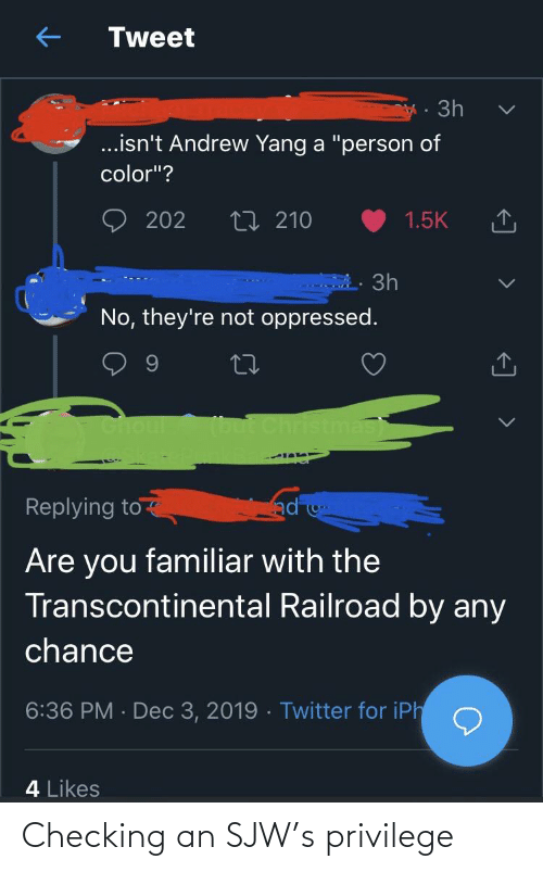 "Transcontinental Railroad: Tweet  · 3h  .isn't Andrew Yang a ""person of  color""?  202  t7 210  1.5K  3h  No, they're not oppressed.  but Christma  Choul  SkacePunki  ad  Replying to  Are you familiar with the  Transcontinental Railroad by any  chance  6:36 PM · Dec 3, 2019 - Twitter for iPh  4 Likes Checking an SJW's privilege"