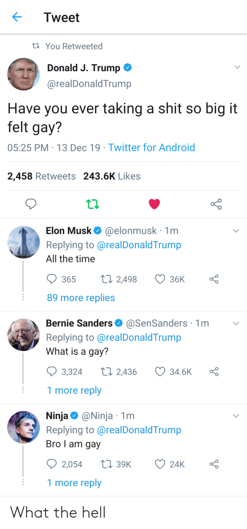 Android, Bernie Sanders, and Shit: Tweet  17 You Retweeted  Donald J. Trump O  @realDonaldTrump  Have you ever taking a shit so big it  felt gay?  05:25 PM · 13 Dec 19 · Twitter for Android  2,458 Retweets 243.6K Likes  Elon Musk O @elonmusk · 1m  Replying to @realDonaldTrump  All the time  27 2,498  365  36K  89 more replies  Bernie Sanders O  @SenSanders· 1m  Replying to @realDonaldTrump  What is a gay?  27 2,436  3,324  34.6K  1 more reply  Ninja O @Ninja · 1m  Replying to @realDonaldTrump  Bro I am gay  Q 2,054  27 39K  24K  1 more reply What the hell