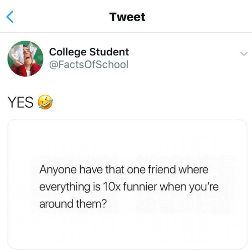 College Student: Tweet  College Student  @FactsOfSchool  YESウ  Anyone have that one friend where  everything is 10x funnier when you're  around them?