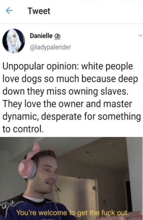 Love Dogs: Tweet  Danielle  @ladypalerider  Unpopular opinion: white people  love dogs so much because deep  down they miss owning slaves.  They love the owner and master  dynamic, desperate for something  to control  You're welcome to get the fuck out.