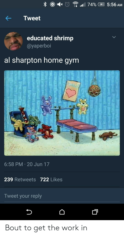 Al Sharpton: Tweet  educated shrimp  @yaperboi  al sharpton home gym  6:58 PM 20 Jun 17  239 Retweets 722 Likes  Tweet your reply Bout to get the work in
