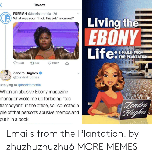 "Emails: Tweet  FREEISH @freeishmedia 2d  Living the  EBONY  Life:  What was your ""fuck this job"" moment?  E-MAILS FROM  THE PLANTATION  1,428  L1547  2,307  Zondra Hughes  @ZondraHughes  Replying to @freeishmedia  When an abusive Ebony magazine  manager wrote me up for being ""too  flamboyant"" in the office, so I collected a  Zondra  Hughes  pile of that person's abusive memos and  put it in a book. Emails from the Plantation. by zhuzhuzhuzhu6 MORE MEMES"