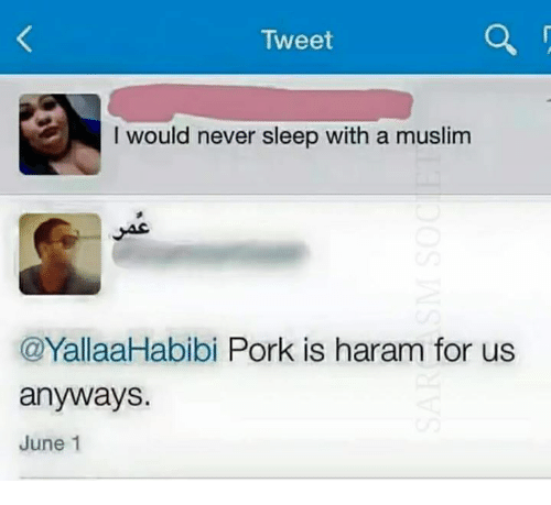 Memes, Haram, and June 1: Tweet  I would never sleep with a muslim  YallaaHabibi Pork is haram for us  anyways.  June 1