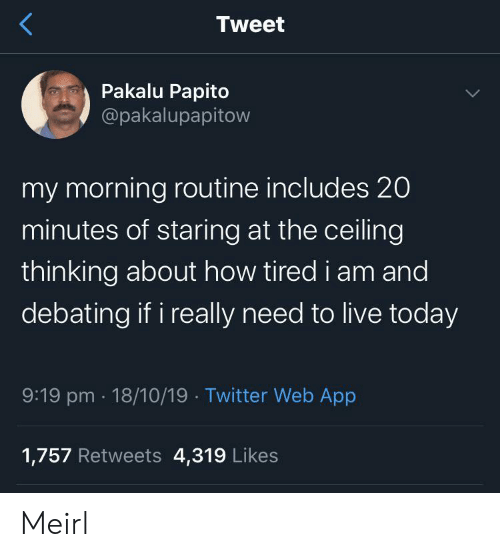 20 Minutes: Tweet  Pakalu Papito  @pakalupapitow  my morning routine includes 20  minutes of staring at the ceiling  thinking about how tired i am and  debating if i really need to live today  9:19 pm 18/10/19 Twitter Web App  1,757 Retweets 4,319 Likes Meirl