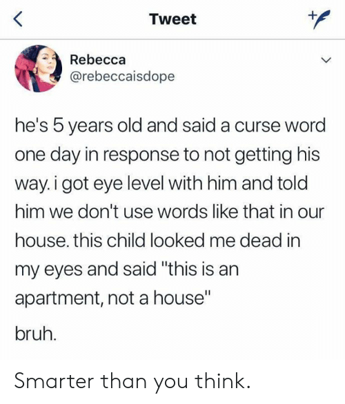 "rebecca: Tweet  Rebecca  @rebeccaisdope  he's 5 years old and said a curse word  one day in response to not getting his  way.i got eye level with him and told  him we don't use words like that in our  house. this child looked me dead in  my eyes and said ""this is an  apartment, not a house""  bruh. Smarter than you think."