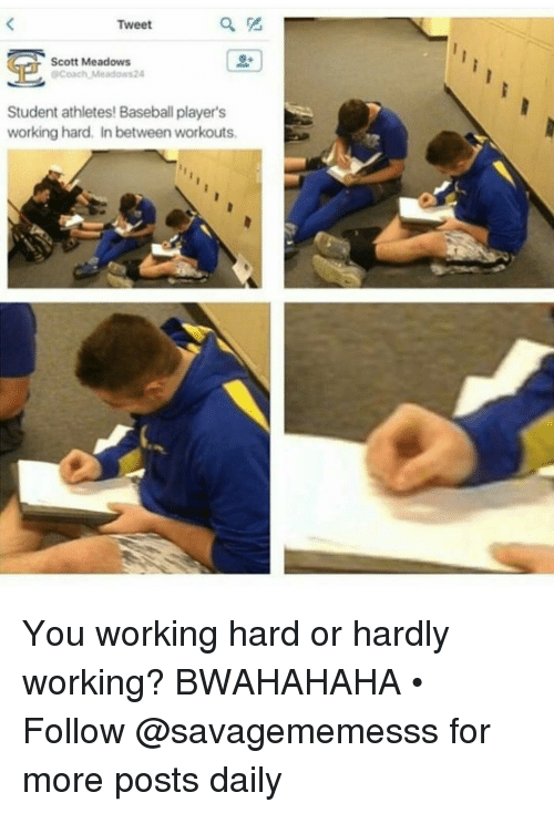 bwahahaha: Tweet  Scott Meadows  OPCoach Meadows24  Student athletes Baseball player's  working hard. In between workouts. You working hard or hardly working? BWAHAHAHA • ➫➫ Follow @savagememesss for more posts daily