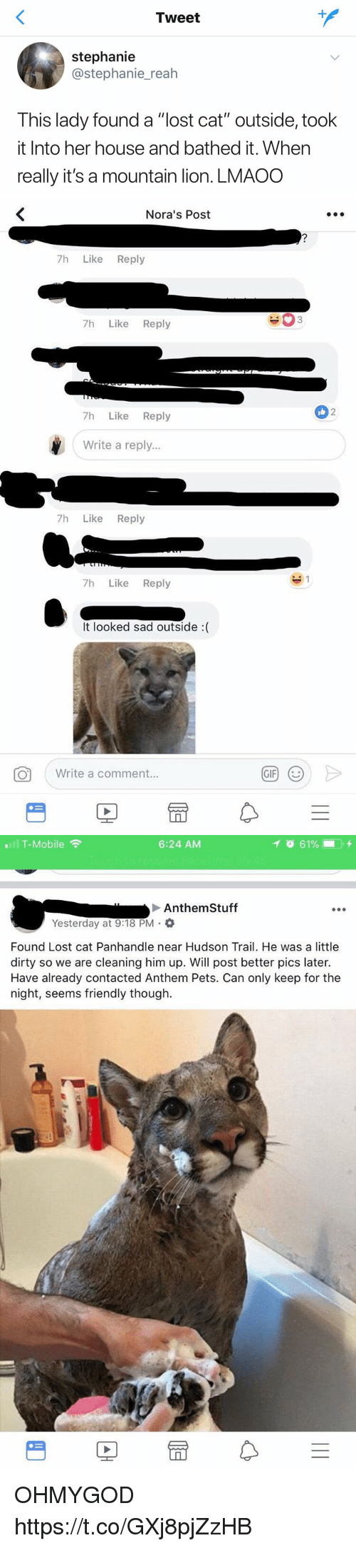 "Lost Cat: Tweet  stephanie  @stephanie_reah  This lady found a ""lost cat"" outside, took  it Into her house and bathed it. When  really it's a mountain lion. LMAOO   Nora's Post  7h Like Reply  7h Like Reply  2  7h Like Reply  Write a reply...  7h Like Reply  7h Like Reply  It looked sad outside :(  。  ( Write a comment.  GIF)  (じ   T-Mobile  6:24 AM  Anthem Stuff  Yesterday at 9:18 PM .  Found Lost cat Panhandle near Hudson Trail. He was a little  dirty so we are cleaning him up. Will post better pics later.  Have already contacted Anthem Pets. Can only keep for the  night, seems friendly though.  rt OHMYGOD https://t.co/GXj8pjZzHB"