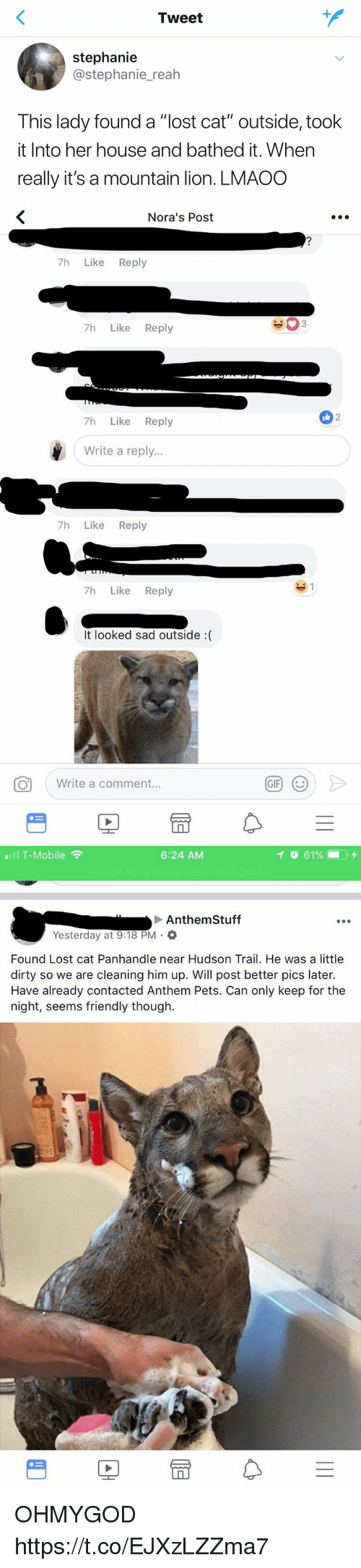 "Lost Cat: Tweet  stephanie  @stephanie_reah  This lady found a ""lost cat"" outside, took  it Into her house and bathed it. When  really it's a mountain lion. LMAOO   Nora's Post  7h Like Reply  7h Like Reply  2  7h Like Reply  Write a reply...  7h Like Reply  7h Like Reply  It looked sad outside :(  Write a comment.  GIF   .111 T-Mobile令  6:24 AM  イ  61%- . +  Anthem Stuff  Yesterday at 9:18 PM .  Found Lost cat Panhandle near Hudson Trail. He was a little  dirty so we are cleaning him up. Will post better pics later.  Have already contacted Anthem Pets. Can only keep for the  night, seems friendly though.  PE OHMYGOD https://t.co/EJXzLZZma7"