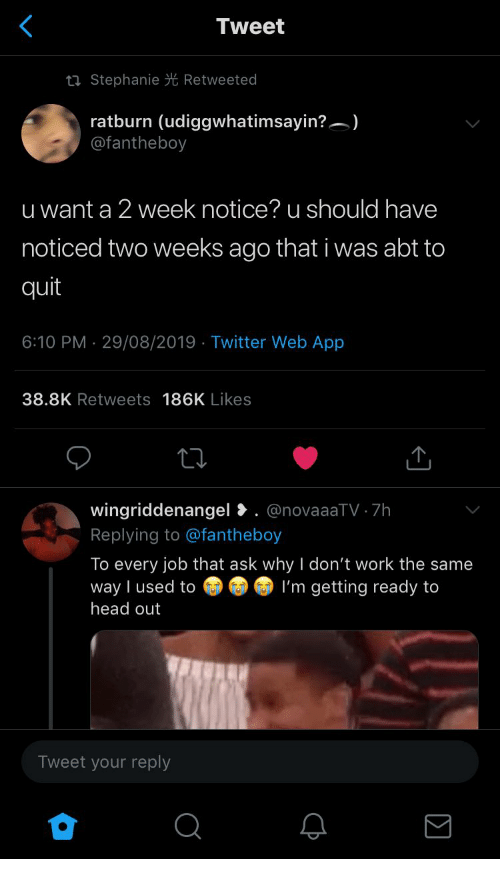 stephanie: Tweet  ti Stephanie Retweeted  ratburn (udiggwhatimsayin?)  @fantheboy  u want a 2 week notice? u should have  noticed two weeks ago that i was abt to  quit  6:10 PM 29/08/2019 Twitter Web App  .  38.8K Retweets 186K Likes  wingriddenangel. @novaaaTV 7h  Replying to @fantheboy  To every job that ask why I don't work the same  way I used to  head out  I'm getting ready to  Tweet your reply