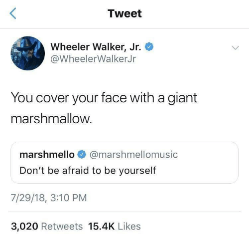 Giant: Tweet  Wheeler Walker, Jr.  @WheelerWalkerJr  You cover your face with a giant  marshmallow.  marshmello  @marshmellomusic  Don't be afraid to be yourself  7/29/18, 3:10 PM  3,020 Retweets 15.4K Likes