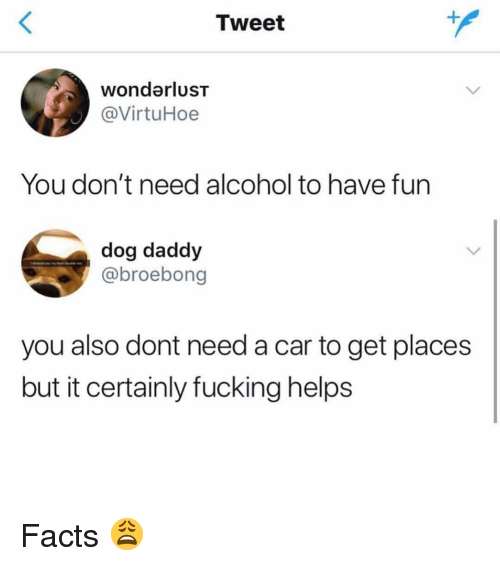 Facts, Fucking, and Memes: Tweet  wondarluST  @VirtuHoe  You don't need alcohol to have fun  dog daddy  @broebong  you also dont need a car to get places  but it certainly fucking helps Facts 😩