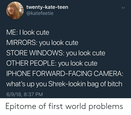 first world: twenty-kate-teen  @katefeetie  ME: I look cute  MIRRORS: you look cute  STORE WINDOWS: you look cute  OTHER PEOPLE: you look cute  IPHONE FORWARD-FACING CAMERA:  what's up you Shrek-lookin bag of bitch  6/9/18, 8:37 PM Epitome of first world problems