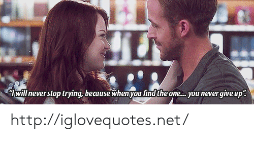 Http, Never, and Net: Twill never stop trying, because when you find the one... you never qive up. http://iglovequotes.net/