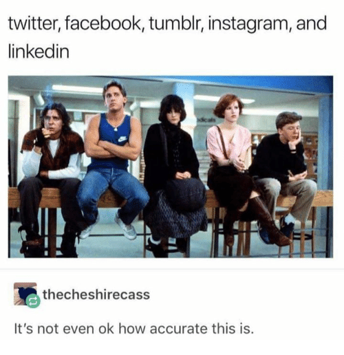 Facebook, Instagram, and LinkedIn: twitter, facebook, tumblr, instagram, and  linkedin  thecheshirecass  It's not even ok how accurate this is.