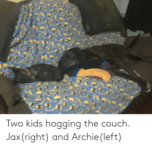 Two Kids: Two kids hogging the couch. Jax(right) and Archie(left)
