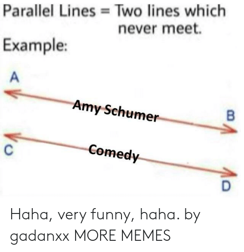 Amy Schumer: Two lines which  never meet.  Parallel Lines  Example:  Amy Schumer  Comedy Haha, very funny, haha. by gadanxx MORE MEMES