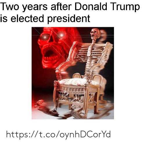 Elected: Two years after Donald Trump  is elected president https://t.co/oynhDCorYd
