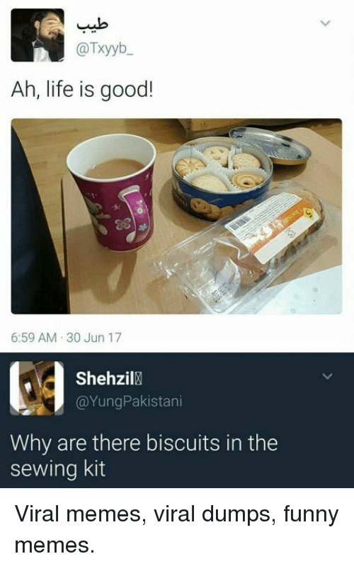 Dumps: @Txyyb  Ah, life is good!  6:59 AM 30 Jun 17  Shehzil  @YungPakistani  Why are there biscuits in the  sewing kit Viral memes, viral dumps, funny memes.