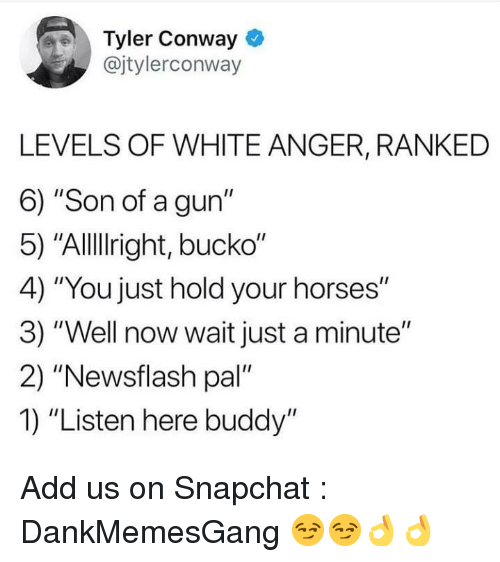 "Bucko: Tyler Conway  @jtylerconway  LEVELS OF WHITE ANGER, RANKED  6) ""Son of a gun""  5) ""Allllright, bucko""  4) ""You just hold your horses""  3) ""Well now wait just a minute""  2) ""Newsflash pal'  1) ""Listen here buddy"" Add us on Snapchat : DankMemesGang 😏😏👌👌"