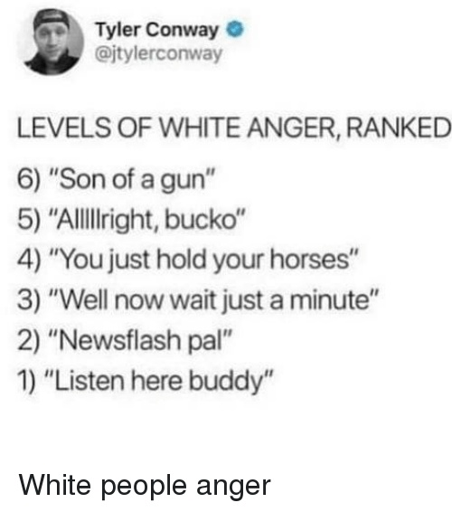 "Conway, Horses, and White People: Tyler Conway  @jtylerconway  LEVELS OF WHITE ANGER, RANKED  6) ""Son of a gun""  5) ""AlllIright, bucko""  4) ""You just hold your horses""  3) ""Well now wait just a minute""  2) ""Newsflash pal""  1) ""Listen here buddy"" White people anger"