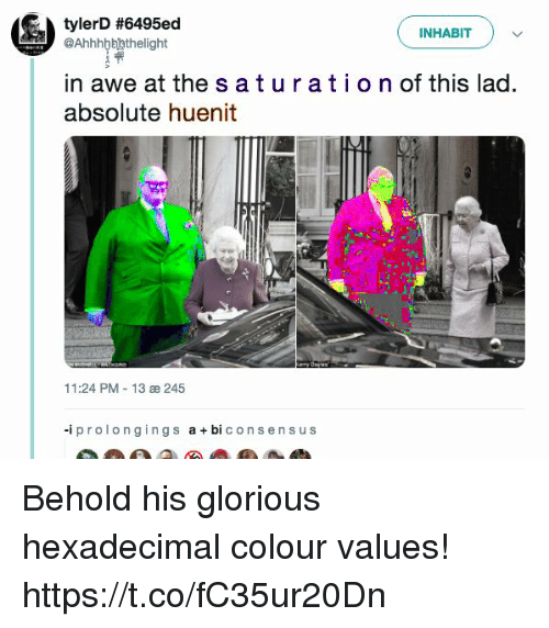 abi: tylerD #6495ed  INHABITv  @Ahhhbbhthelight  in awe at the s aturatio n of this lad.  absolute huenit  11:24 PM 13 æ 245  -iprolongings abi consen s us Behold his glorious hexadecimal colour values! https://t.co/fC35ur20Dn