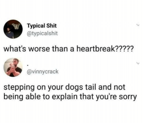 typical: Typical Shit  @typicalshit  what's worse than a heartbreak?????  @vinnycrack  stepping on your dogs tail and not  being able to explain that you're sorry
