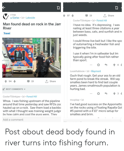 """Ass, Bad, and Cats: TZOT  LTL  r/rva  L Share  97  19  u/Zarlac 1d Lakeside  Cooter TStinkjaw 1d Forest Hill  Man found dead on rock in the Jam  I have no idea. It's depressing. I was  nailing at least three citations a year  between bass, cats, and sunfish and n  just weeds.  River  Travel  CAST  I could throw live bait but I like the spo  of outsmarting a freshwater fish and  triggering the bite  TOLL  TO  93  I use it when I'm in saltwater but Im  typically going after food fish rather  than sport.  BIKE LANE  CHMOND  CAMBULANCE  LouieKablooie 1d Maymont  wtyr.com  Ouch that rough. Get your ass to an old  farm pond to break the streak. Will say  smallies been hard to find last couple  years. James smallmouth population is  hurting bad.  T,Share  94  19  BEST COMMENTS  Cooter TStinkjaw 1d Forest Hill  mczplwp 1d  Whoa. I was fishing upstream of the pipeline  around that time yesterday and saw RFDS zoc  hauled up on a rock. Saw them load a backbo  with what I thought was training weight judgir  I've had good success on the Appomatto  on the rocks using a Floating Rapalla Gol  #5 paired with a 4'10"""" micro setup for  smallies and brim.  bv how calm and cool the guvs were. Thev  Add a comment Post about dead body found in river turns into fishing forum."""