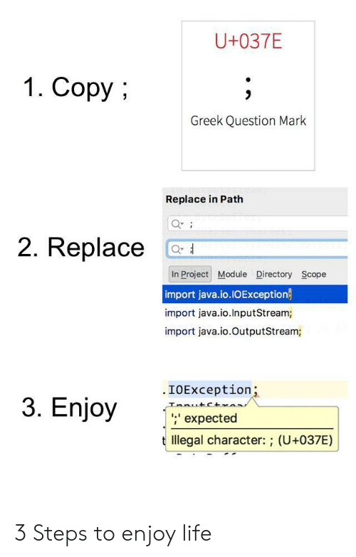 Life, Java, and Greek: U+037E  1. Copy  Greek Question Mark  Replace in Path  2. Replace C  In Project Module Directory Scope  import java.io.IOException  import java.io.InputStream;  import java.io.OutputStream;  .IOException  nio  ;' expected  t llegal character: ; (U+037E) 3 Steps to enjoy life