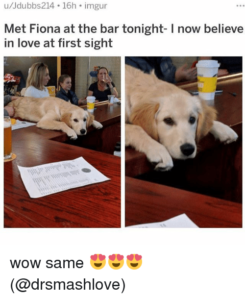 love at first sight: u/Jdubbs214 16h imgur  Met Fiona at the bar tonight- I now believe  in love at first sight wow same 😍😍😍 (@drsmashlove)