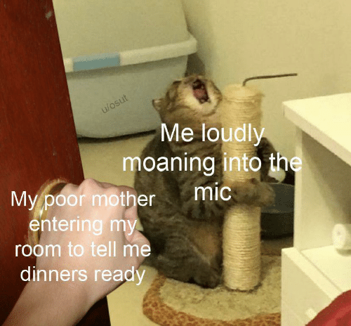 Mother, Mic, and Poor: u/osut  Me loudly  moaning into the  mic  My poor mother  entering my  room to tell me  dinners ready